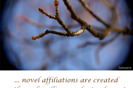novel-affiliations-are-created--through-willingness-by-tendency