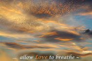 allow-Love-to-breathe--and-you-will-be-released