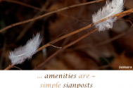 amenities-are--simple-signposts-of-behavior