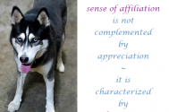 a-sense-of-affiliation-is-not-complemented-by-appreciation---it-is-characterized-by-alterations