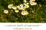 contrast-baths-of-appraisals--will-give-rise-to-inner-homelessness