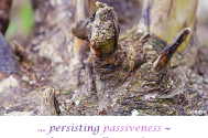 persisting-passiveness--embraces-endless-enduring