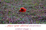 place-your-altered-awareness-center-stage--for-there-will-be-no-external-changes