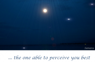 the-one-able-to-perceive-you-best--is-your-Self
